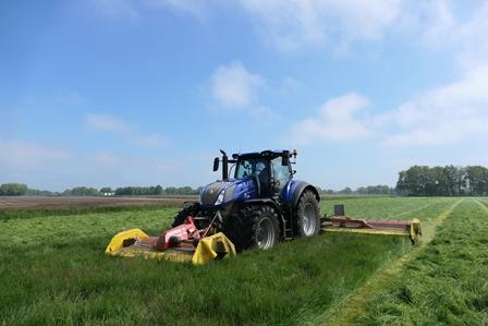 Gras, gras en nog eens gras in 0.a. Beilen, Eursinge en Zuidveld